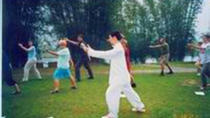 One-Day Private Yangshuo Tai-chi and Biking Tour, Guilin, Private Sightseeing Tours