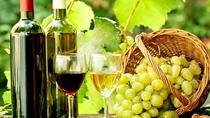 One-Day Wine Tour to Kakheti from Tbilisi, Tbilisi, Wine Tasting & Winery Tours