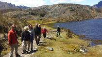 Full-Day Tour to Cajas National Park with Small-Group, Cuenca, Day Trips