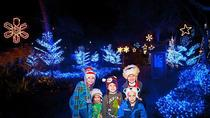 Christmas in the Wild at Tampa's Lowry Park Zoo, Tampa, Zoo Tickets & Passes