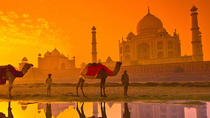 1 Day Taj Mahal Sunrise Tour from Delhi By Car, New Delhi, Day Trips