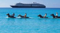 2-Hour Horse Back Ride And Swim from Montego Bay, Montego Bay, Horseback Riding