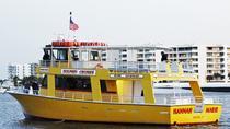 Dolphin Cruise in Destin, Destin, Dolphin & Whale Watching