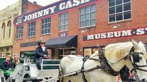 Paseo privado de 45 minutos por el centro de Nashville Horse and Carriage Ride, Nashville, Paseos en coche de caballos