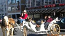 Privé Downtown Nashville Horse and Carriage Ride, Nashville, Promenades en calèche