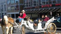 Private 20 Minute Downtown Nashville Horse and Carriage Tour, Nashville, City Tours