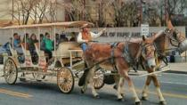 Private Tour: BYOB Horse Carriage Pub Crawl, Nashville, Private Sightseeing Tours