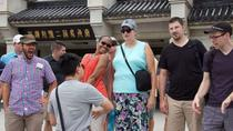 Xi'an Essential Tour of Terracotta Warriors, Xian, Airport & Ground Transfers