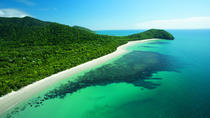 Cape Tribulation, Mossman Gorge, and Daintree Rainforest Day Trip from Cairns or Port Douglas, ...