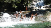 Full-Day Tour from Cairns: Atherton Tablelands and Waterfalls, Cairns & the Tropical North, Day ...