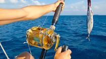 Private Deep Sea Fishing Tour from Abrantes, Salvador da Bahia