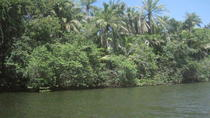 Private Jungle Boat Tour to Sapiranga Natural Reserve from Abrantes, Salvador da Bahia