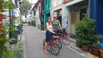 Full-Day Bike and Food Tour from Singapore, Singapore, Private Sightseeing Tours