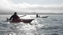 Lower Columbia River Kayaking Tours, Portland