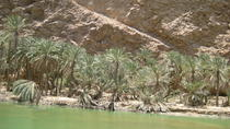 Coastal Tour and Wadi Hike from Muscat