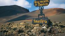Bus to Timanfaya National Park, Lanzarote, Nature & Wildlife
