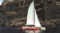 Catamaran Cruise with Transfers in Tenerife, Tenerife, Sailing Trips