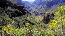 Exclusive tour to Gran Canaria pearls, La Palma, Day Trips
