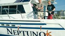 Fishing trip in Tenerife on the yacht Neptuno, Tenerife, Fishing Charters & Tours