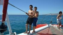 Fuerteventura Catamaran Half-Day Cruise from Caleta de Fuste