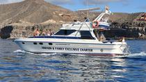 Gran Canaria Beach Hopping Cruise by Motor Yacht with Lunch, Gran Canaria, Day Cruises