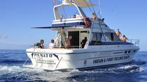 Gran Canaria Beach Hopping Cruise by Motor Yacht with Lunch