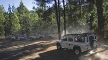 Jeep safari in Tenerife: Teide-Masca Route, Tenerife, 4WD, ATV & Off-Road Tours