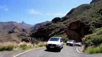 Minivan VIP Tour to the north of Fuerteventura, Fuerteventura, Bus & Minivan Tours