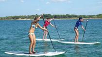 Paddle Surf initiation course in Palma, Mallorca, Surfing Lessons