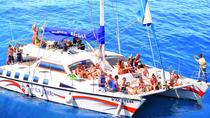 Sail on Board of the Catamaran Afrikat, La Palma, Sailing Trips