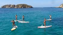 Stand-up-Paddle-Boarding-Tour an den Santa Ponsa-Stränden, Balearic Islands, Stand Up Paddleboarding