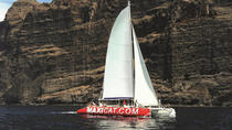 Tenerife Catamaran Cruise from Puerto Colon, Tenerife, Sailing Trips