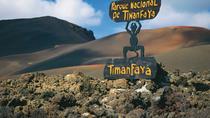 Timanfaya the Green Lagoon and La Geria, Lanzarote, Nature & Wildlife