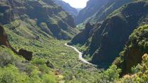 Trekking Tour Canyon of Guayadeque in Gran Canaria, Gran Canaria