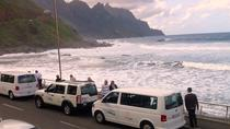 VIP excursion in La Gomera starting in the South of Tenerife, La Gomera, Full-day Tours