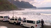 VIP excursion in La Gomera starting in the South of Tenerife, La Gomera, Full-day Tours