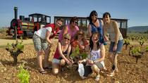 Winery Gourmet Tour in Mallorca, Mallorca, Wine Tasting & Winery Tours