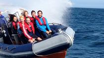 Private Group Powerboat Ride in Brighton, Brighton