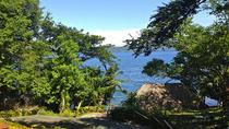 4-Hour Apoyo Lagoon Tour, Managua, Day Trips