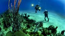 Scuba Diving Day Trip from Cartagena, Cartagena