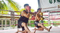 Muay Thai Lesson with Pad Thai Meal, Bangkok, Cooking Classes