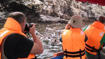 Half-Day Tour Pucusana Fishing Village and Wildlife from Lima, Lima, Half-day Tours