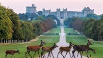 Private One Way or Round Trip Transfer: Heathrow Airport to Windsor, London, Airport & Ground...