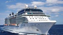 Private Transfer: Central London to Southampton Cruise Port Via Windsor Castle, London, Private...