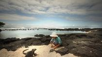 5-Day Darwin Footprints Tour, Galapagos Islands, Multi-day Tours
