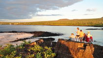 7-Day Darwin Footprints Tour, Galapagos Islands, Multi-day Tours
