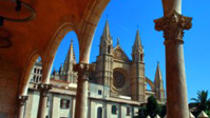 City Sightseeing Palma de Mallorca Hop-On Hop-Off Tour with Optional Boat Ride or Bellver Castle...