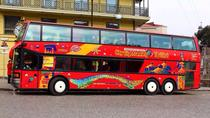 City Sightseeing Tbilisi Hop-On Hop-Off Tour, Tbilisi