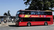 Tour Hop-On Hop-Off di Copenhagen con City Sightseeing, Copenaghen, Tour hop-on/hop-off