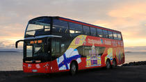 Tour Hop-On Hop-Off di Helsinki con City Sightseeing, Helsinki, Tour hop-on/hop-off